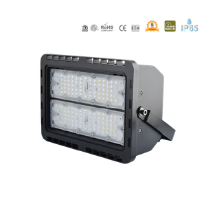 LED-Module洪水Light-IP65